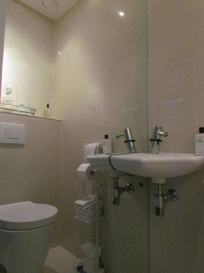 toilet-met-spiegelwand